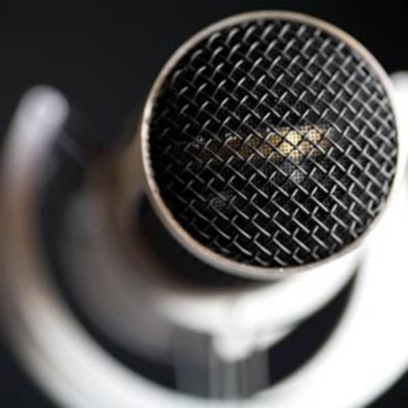 phantheraa Brauner Phantera Fet microphone