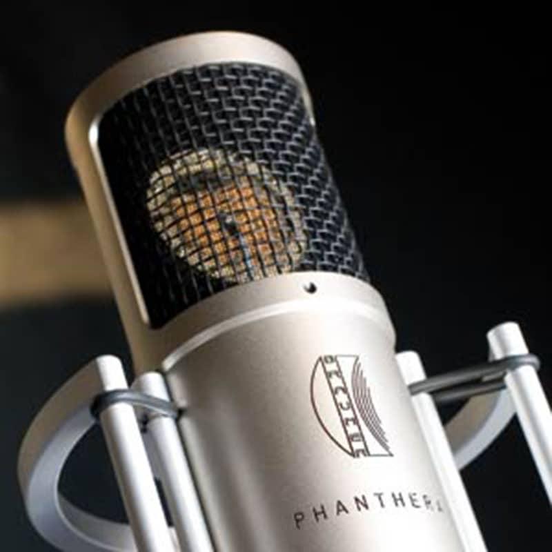 phantherab Brauner Phantera Fet microphone