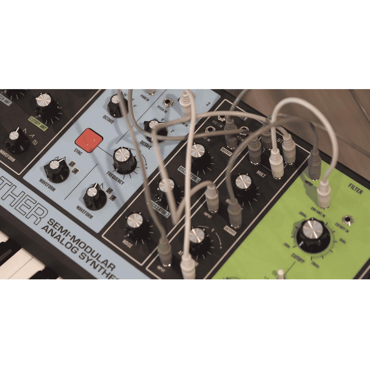 moog grandmother 4 Sintetizzatori e Drum Machine, Sintetizzatori e Tastiere, Synth a tastiera