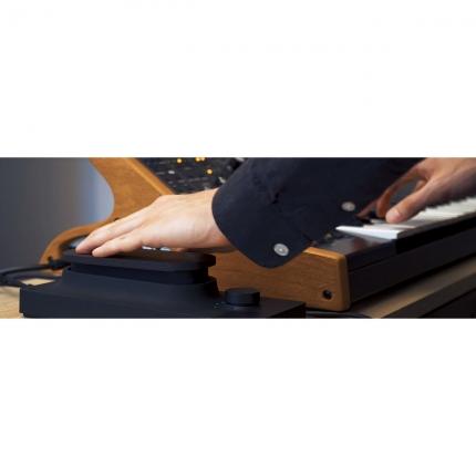 Expressive e Touche 05 430x430 Sintetizzatori e Drum Machine, Sintetizzatori e Tastiere, Master Control