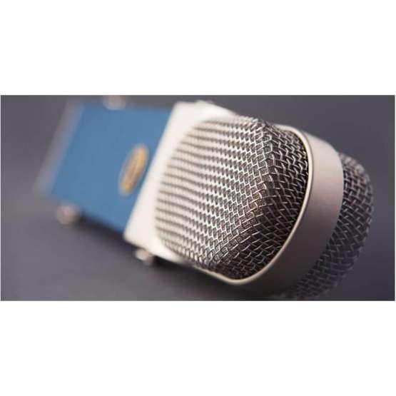 Blue Blueberry top view zoom 555x555 Microfoni a Condensatore, Microfoni professionali, Strumentazioni Pro Audio per studi di registrazione
